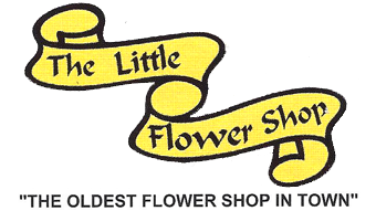 LITTLE FLOWER SHOP