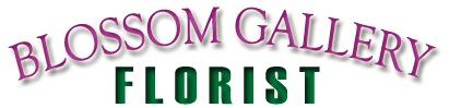 BLOSSOM GALLERY FLORIST