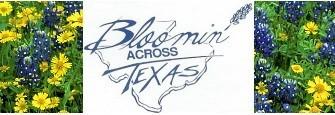 Bloomin' Across Texas