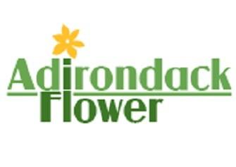 ADIRONDACK FLOWER